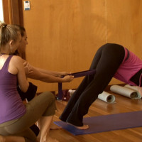Yoga Teacher Training Taste Test