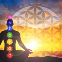 The Chakras: Attuning the Subtle Energy Body for Transformation and Awakening