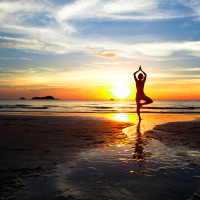 Intro to Zen Ki Yoga® and take your asana further workshop + Zen Ki Yoga® class