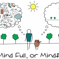 Mindfulness Workshop