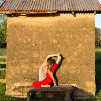 Roaming Yogis/ The Berry Yoga Shala logo