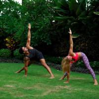 Master Yoga Certification - 200 Hour Yoga Teacher Training YAA