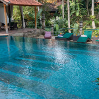Bali Yoga Rejuvenation and Healing Retreat