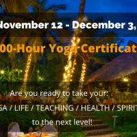 22-Day 200-Hour Yoga Teacher Training in India