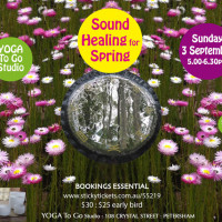 SOUND HEALING REJUVENATION GONG SHOWER FOR SPRING