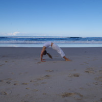 Flo Fenton's Fundamentals of Yoga Asana Melbourne