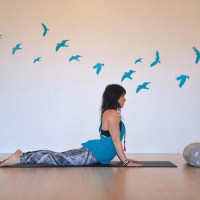 Yin Yoga Masterclass ~ Supple Spine for Springtime