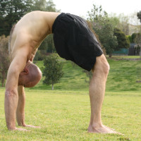 Backbend workshop Extend the spine & uplift the spirit…