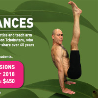 ARM BALANCES THE EASY WAY.....