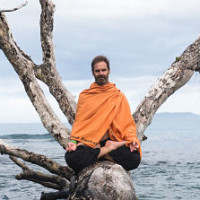 350 Hour Hatha Yoga Teacher Training With Mark Breadner, Yoga Coach