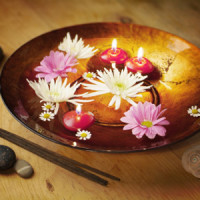 Ayurveda and the Guna-s