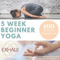 5 weeks Beginner Yoga
