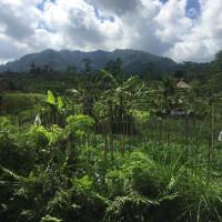 Indriya: Exploring the Senses