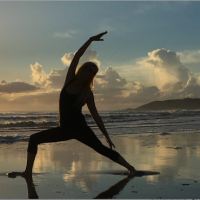 Shakti Yoga Women's 200Hr Teacher Training Module 1