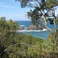 Come for a hike with us to Bushrangers Bay, Cape Schanck