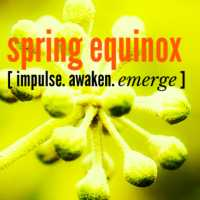 SPRING EQUINOX SESSION  :::  EMERGE