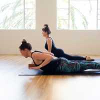 'Exploring the Spine' Workshop