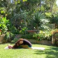 Therapeutic / Restorative Yoga