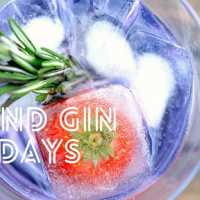 Yin & Gin Friday's with Stretch Yoga