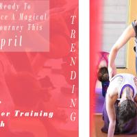 300 Hour Yoga Teacher Training - April 2019
