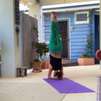 Headstand & Backbends workshop - Fremantle