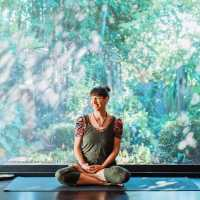 Botannix Yoga Studio 200hr Teacher Training Program