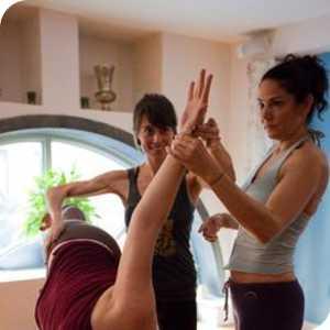 Hatha Yoga Teacher Training Diploma 2019 logo
