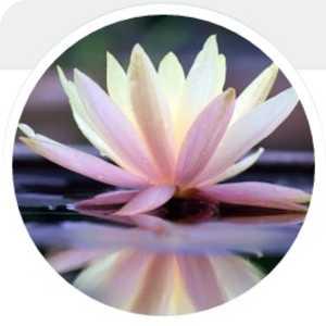 Pennant Hills - Nirvana Yoga logo