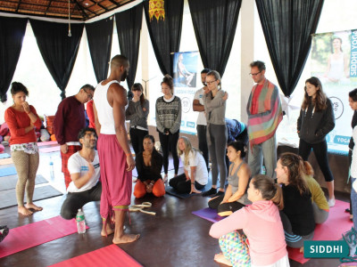 What Happens in Yoga Teacher Training