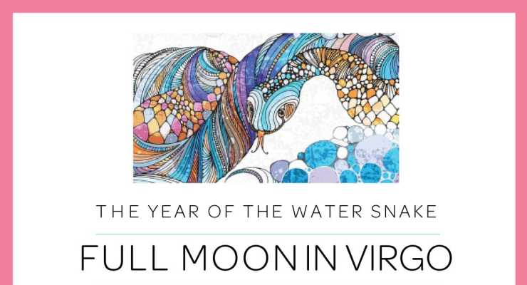 Full Moon Meditation - Celebrate the Year of the Water Snake
