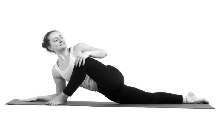 Introduction to Yin Yoga: Theory and Practice  (Level 1)