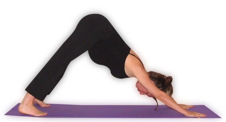 Prenatal Yoga Teacher Training Weekend Intensive