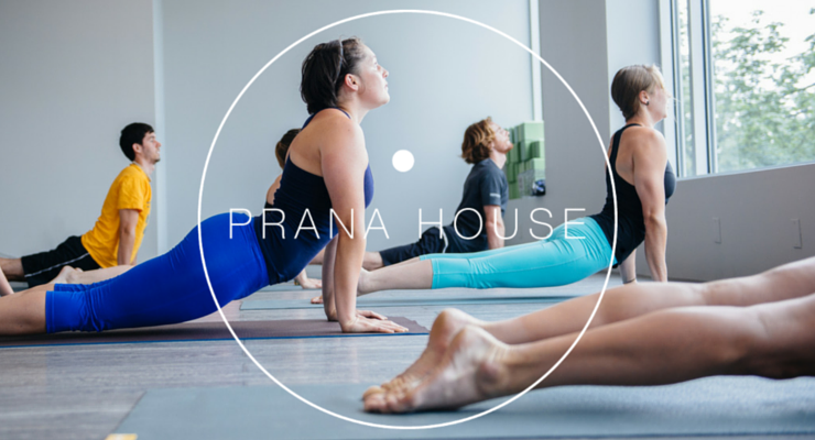 Beginner Yoga with Eleni Kyrpigikidis | 10 Week Course