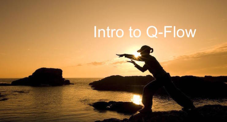Intro to Q-Flow