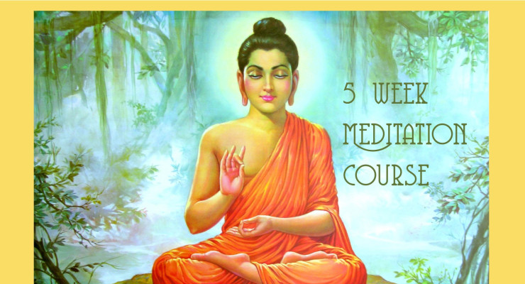 5 week meditation course