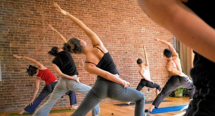 Vinyasa Yoga Term 1