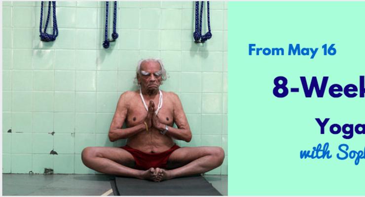 8 Week Iyengar Yoga Course with Sophie Johnston