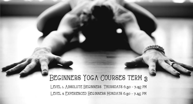 Beginners courses Mona Vale