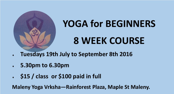 YOGA FOR BEGINNERS NOW WITH VERONIKA POWER FLOW