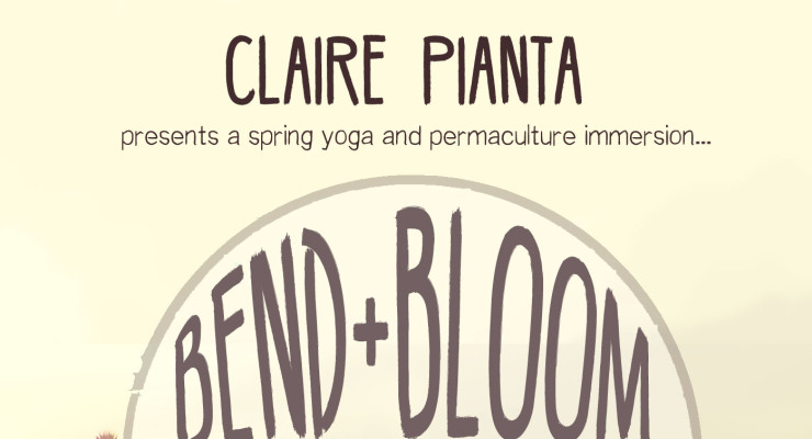 Bend and Bloom Urban Retreat