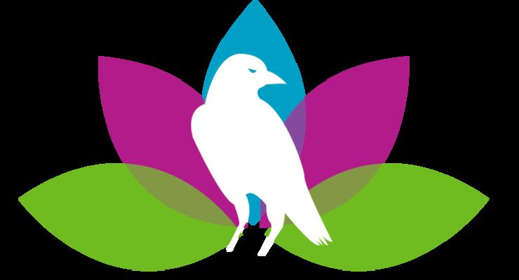 Jan 2020 Yoga Intensive @ Crows Nest Yoga
