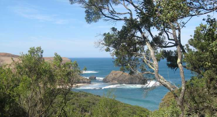 Come for a hike with us to Bushrangers Bay, Cape Schanck ...