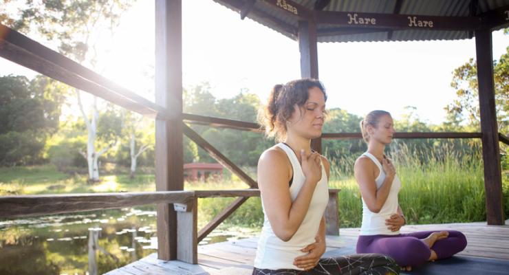 Level 2 Vinyasa Yoga Teacher Training (300 HR)