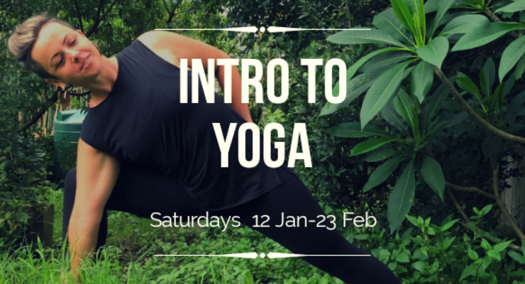 Introduction to Yoga: 6 week course (Saturdays)