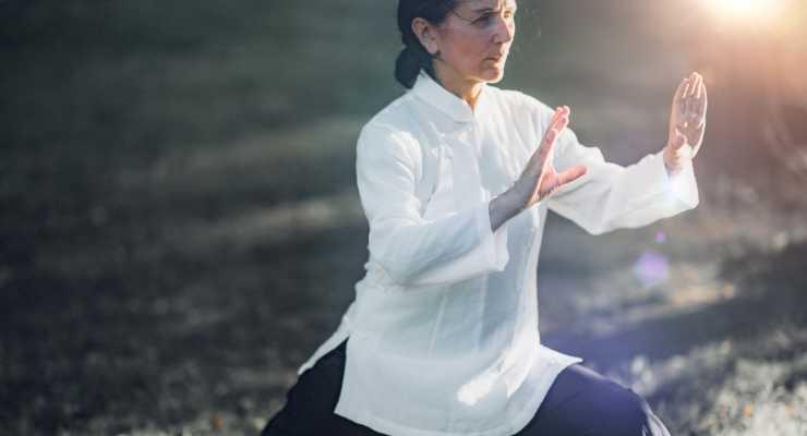 Intro to Vishrant Tai Chi: 4 Week Course