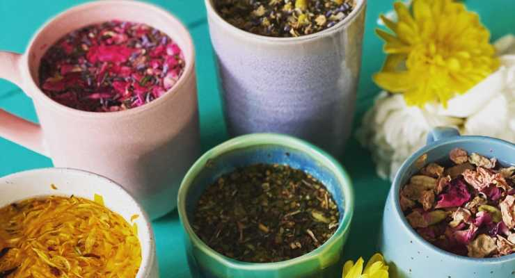 Ayurveda Sadhana Course for Women  (in-person 4-day training)