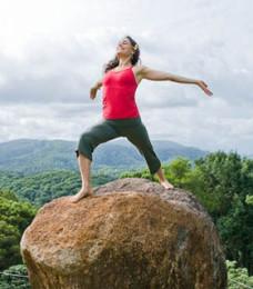 Byron Yoga Teacher Training: The Ishta System logo