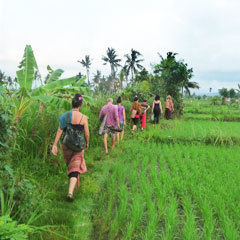 Bali Life Force Retreat Oki-do Yoga & Zenthai Shiatsu