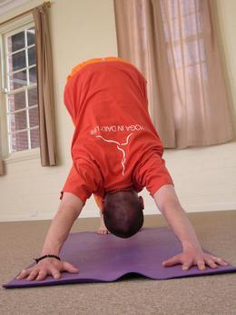 Ivanhoe Yoga & Meditation Classes