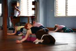 Iyengar Yoga Level 1 + 2 (10 Week Course)